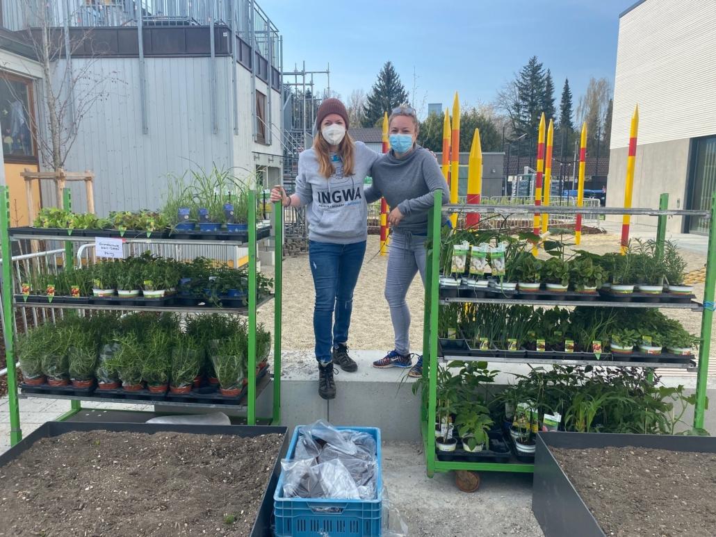 Pflanzenspende der Gärtnerei Böck